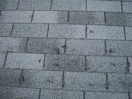 Hail damage on asphalt shingles