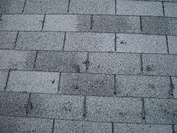 Hail damage on asphalt shingles