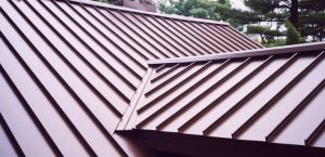 A house with a standing seam metal roof